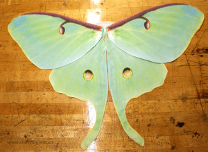 butterfly costume wings tutorial