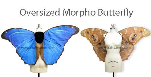 oversized_morpho