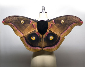 Polyphemus moth halloween costume wings