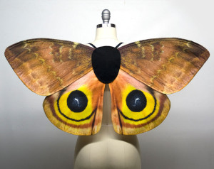 Io moth costume wings