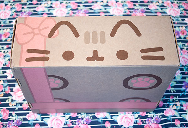 pusheen box winter 2016