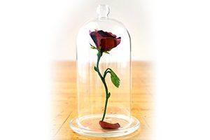 rosethumb